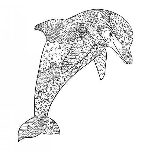 fantasy dolphin coloring page kidspressmagazine