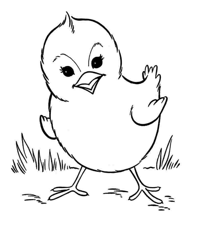 farm animals coloring pages for toddlers free printable farm