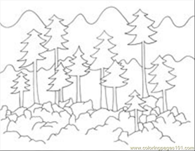 foresttrees coloring page free forest coloring pages