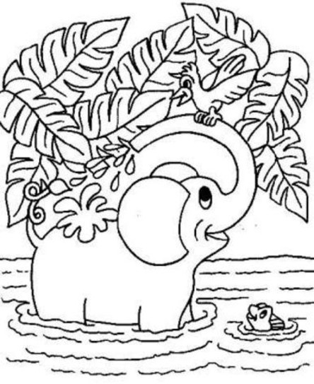free coloring pages animal