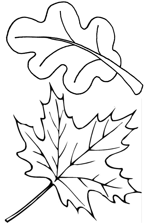 free coloring pages leaves coloring pages