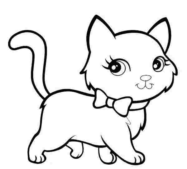 free coloring pages of a kitten free printable kitten