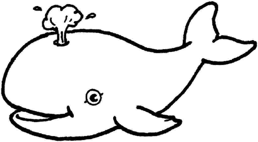 - Sea Creatures Coloring Pages Picture - Whitesbelfast