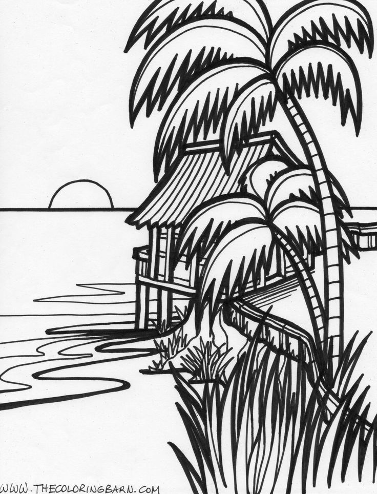 free coloring pages tropical download free clip art free