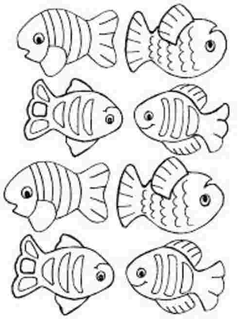 free coloring pages with fish free coloring page of salmon