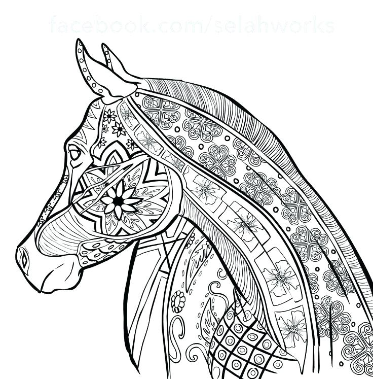 free horse coloring pages for adults at getdrawings