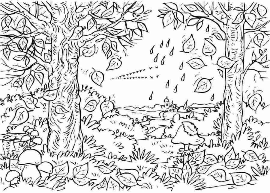 free nature coloring pages for adults free printable nature