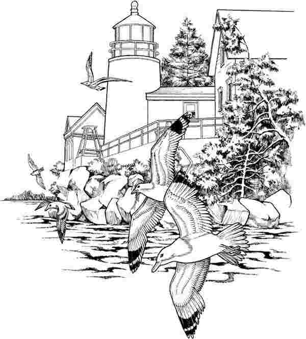 free nature coloring pages for adults nature coloring pages
