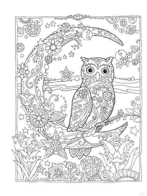 Owl Coloring Pages For Adults Picture - Whitesbelfast
