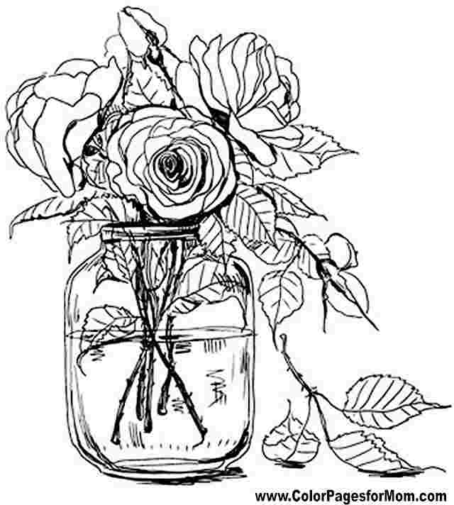 Flower Coloring Pages For Adults Picture Whitesbelfast