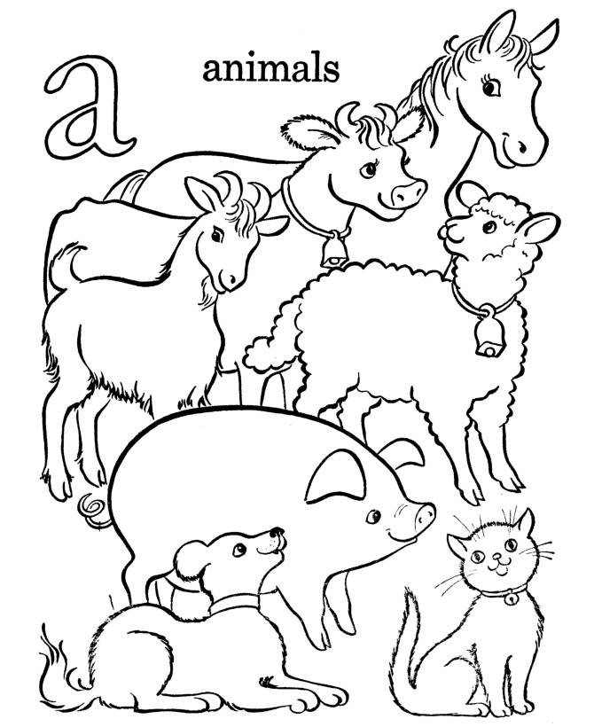 Animal Coloring Pages For Kids Pictures - Whitesbelfast.com