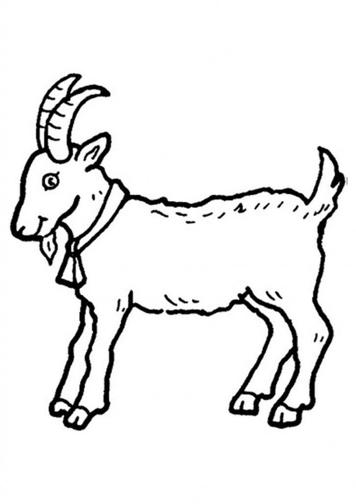 free printable goat coloring pages for kids malvorlagen