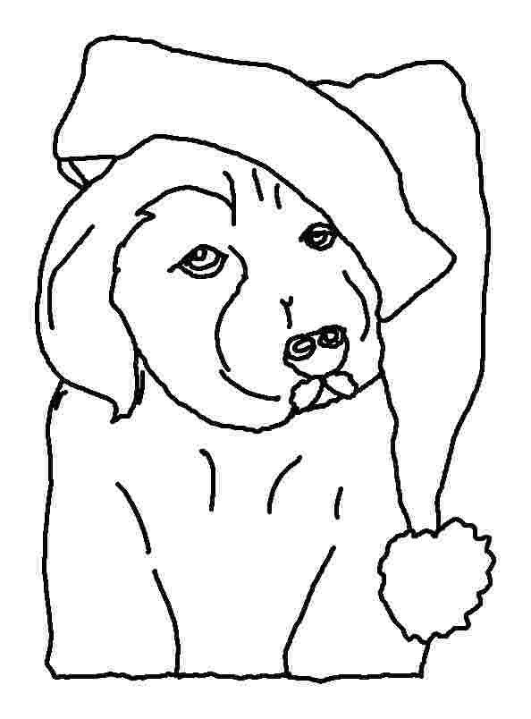 free printable puppy christmas coloring pages christmas dog
