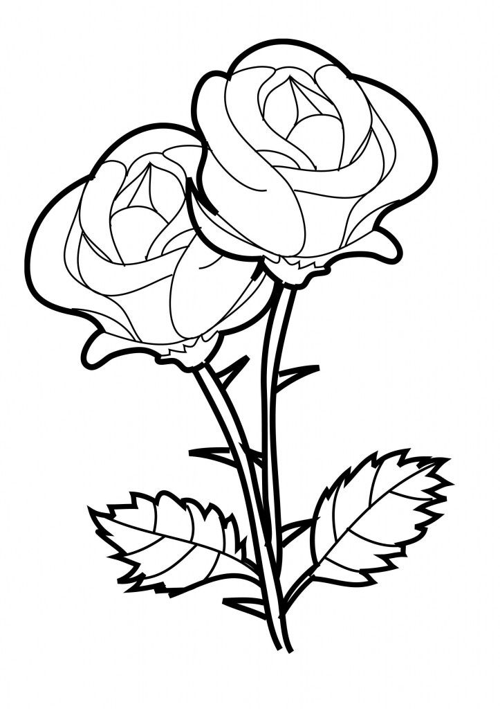 free printable roses coloring pages for kids rose coloring