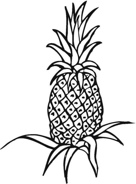 fruit pineapple coloring page