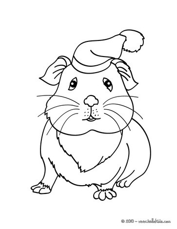guinea pig wearing a hat coloring pages hellokids