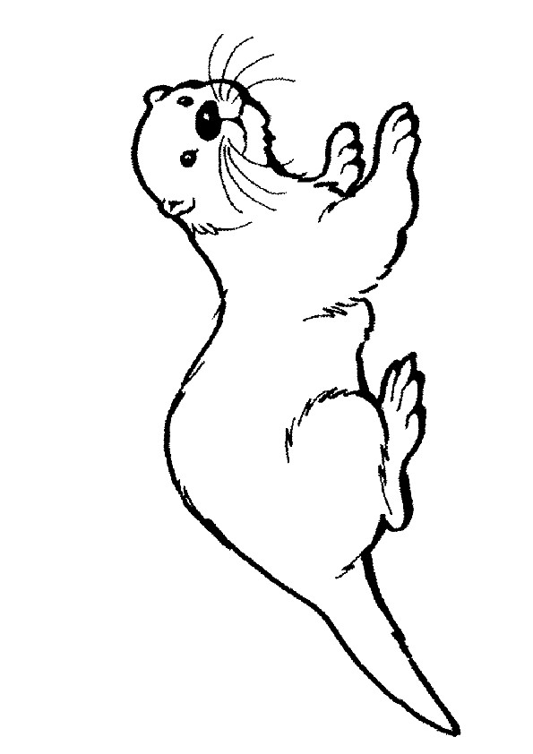 hairy nosed otter coloring page free printable coloring