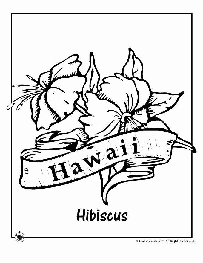 hawaiian flower coloring page luxury exotic flower coloring