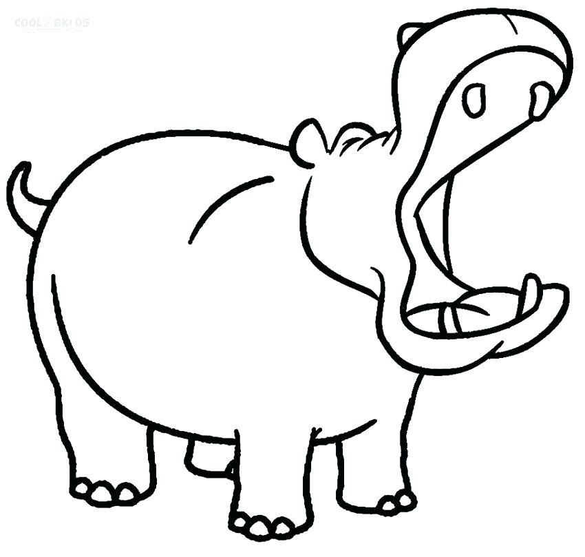 hippo coloring page ba pages thejackieblogxyz