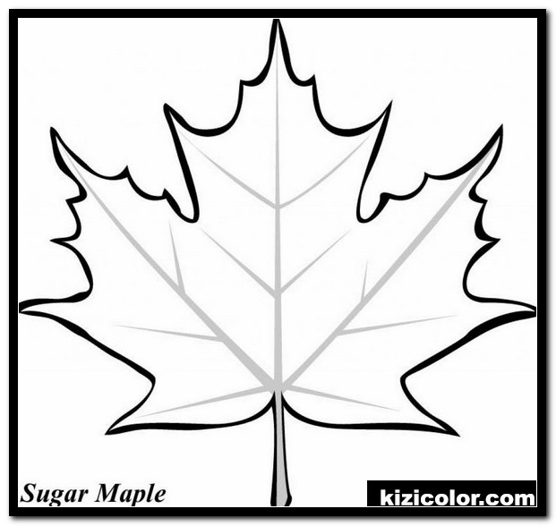 holly leaf coloring page 1 kizi free coloring pages for