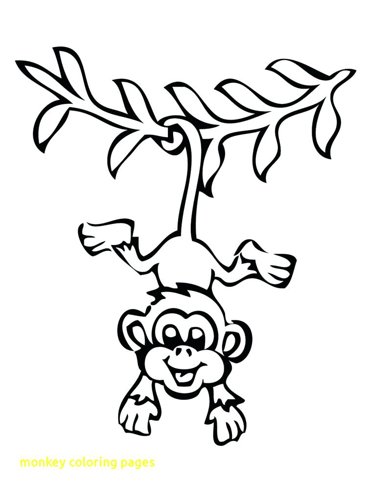 howler monkey coloring page at getdrawings free for