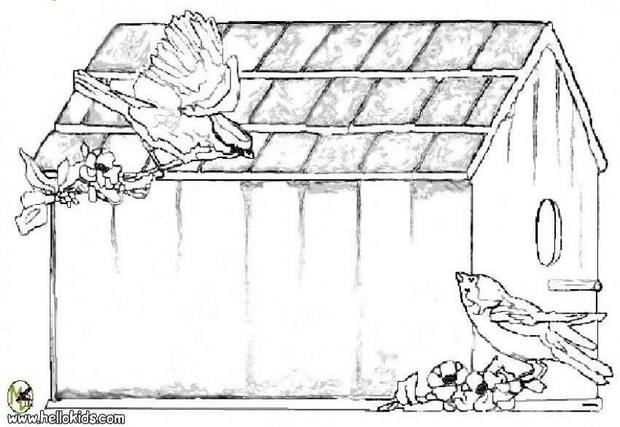 hut for birds coloring pages hellokids