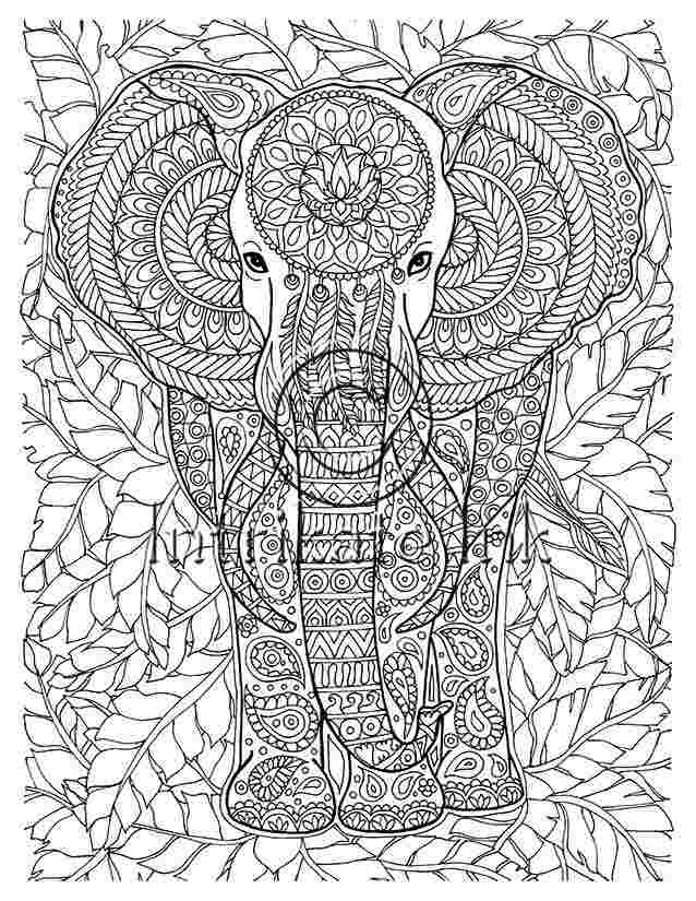 intricate elephant coloring pages intricate elephant