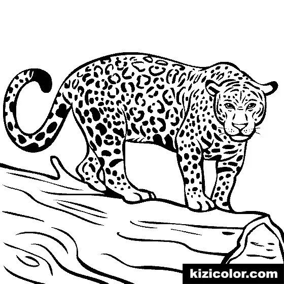 jaguar kizi free coloring pages for children coloring