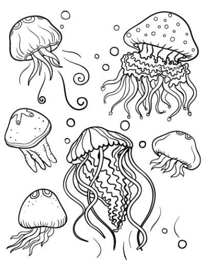 jellyfish coloring page fish coloring page mermaid
