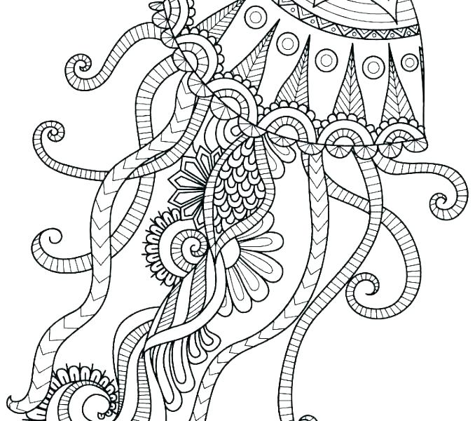 jellyfish coloring page siirthaber