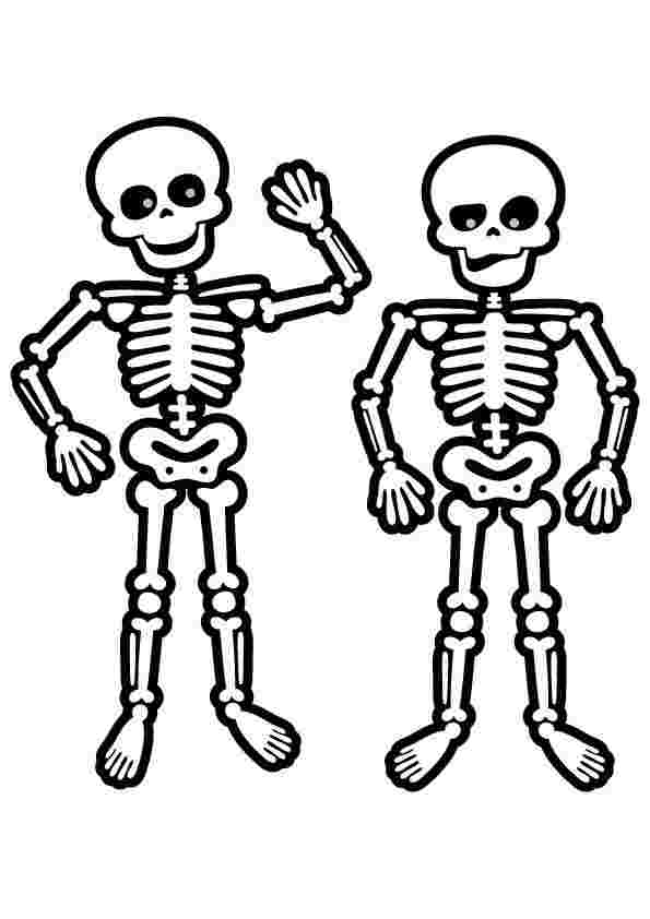 - Skeleton Coloring Pages Gallery - Whitesbelfast