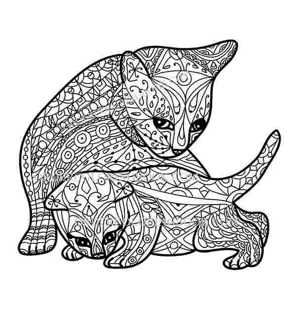 kitty cat coloring pages for adults springtime cat coloring