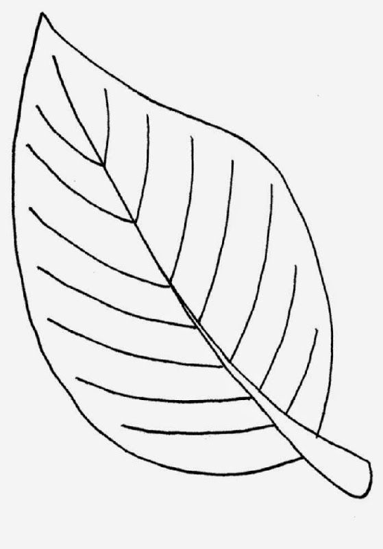 leaf coloring pages free coloring pages leaf coloring