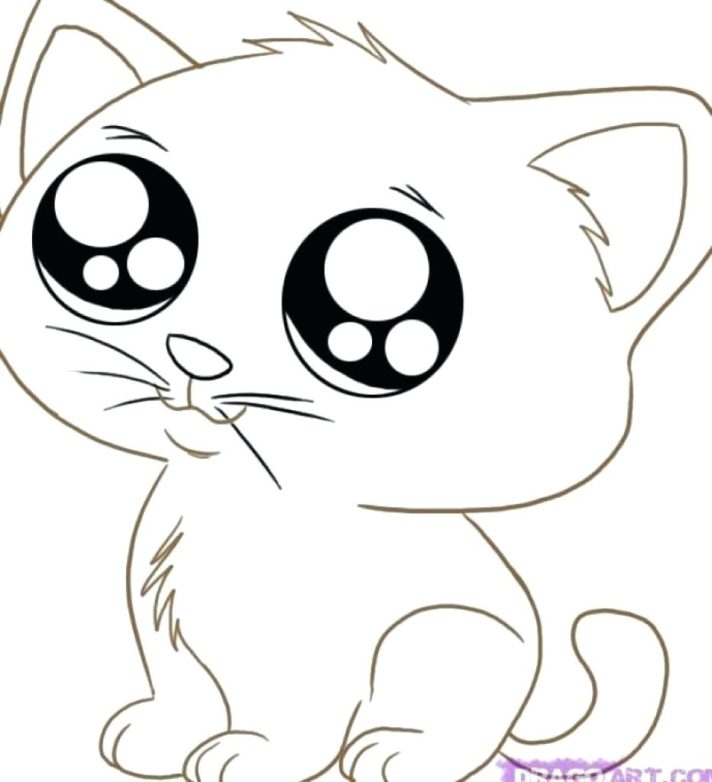 new coloring pages printable kitten cute kitty pictures to