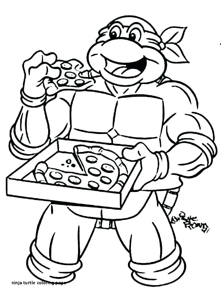 ninja turtle color noticiasdemexico