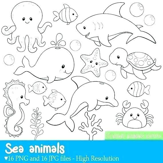 ocean life coloring sheets soidesign