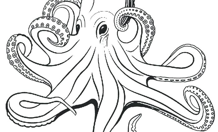 octopus coloring pages for kids at getdrawings free