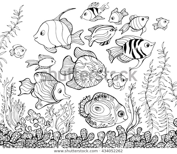 outline drawing underwaterfishcoloring pages kids stock