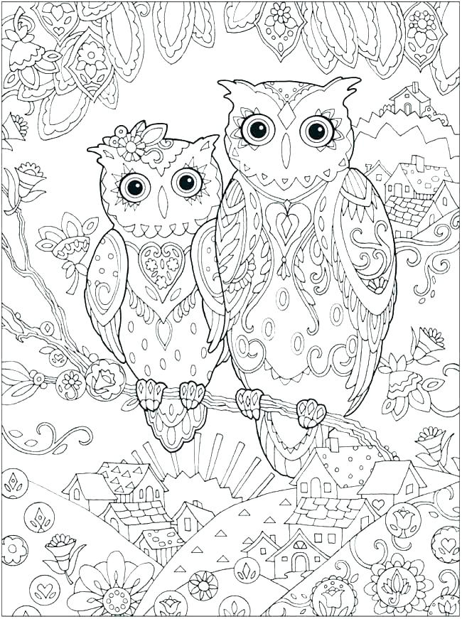 owl coloring pages colored at getdrawings free for