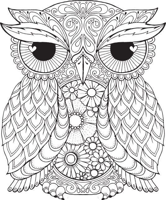 owl coloring pages printable