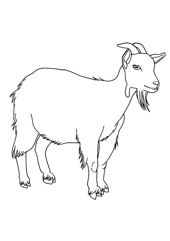 parentune free printable goat coloring pages goat