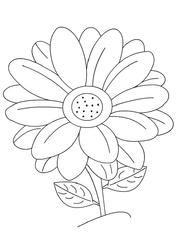parentune free printable the daisy coloring picture