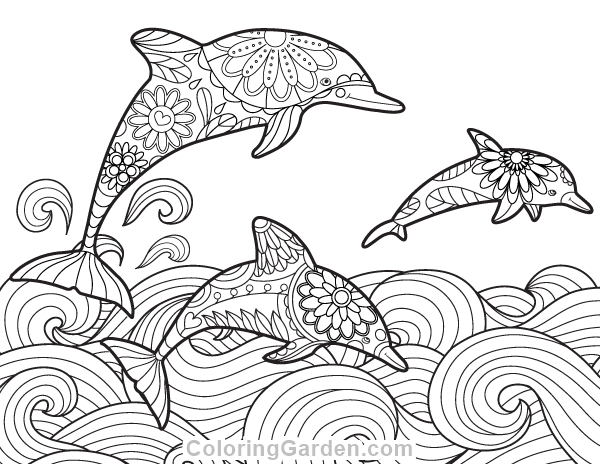 pin niki wiza on coloring pages dolphin coloring pages