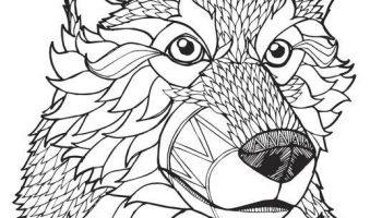 Adult coloring pages wolf   Coloring pages Colorful World   200x350