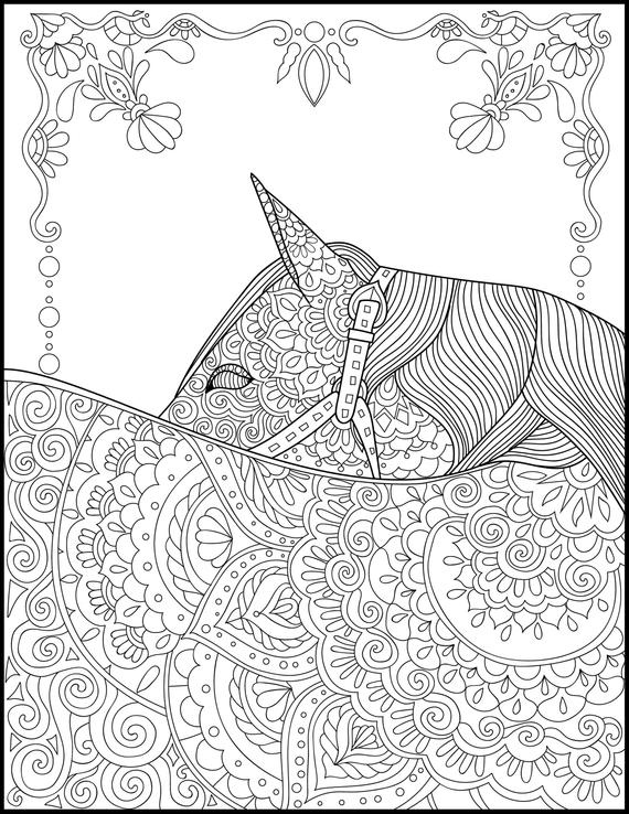 printable coloring page adult coloring pages horse coloring page horse lover gift animal coloring page grown up coloring horses