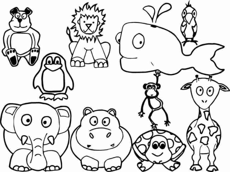 printable coloring page animal realistic animal coloring