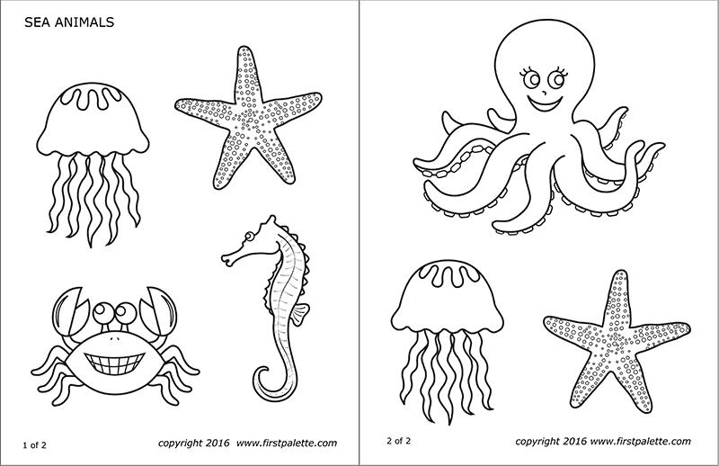 printable coloring pages of sea animals ocean seahorse3
