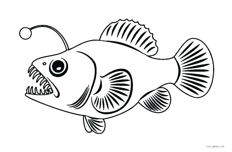 printable fish coloring pages siirthaber