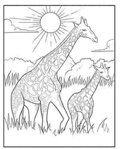 printable giraffe coloring pages for adults giraffe on