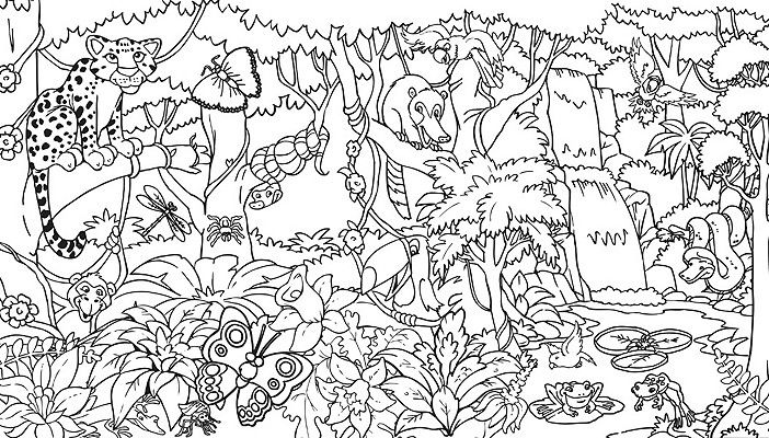 rainforest free printable jungle coloring pages jungle